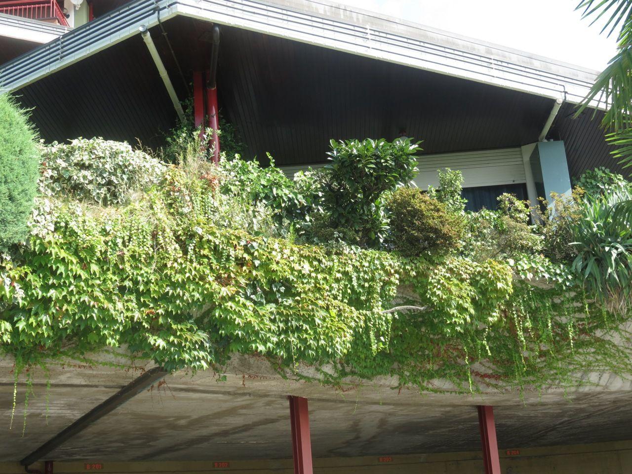 terrazzo la selva 2