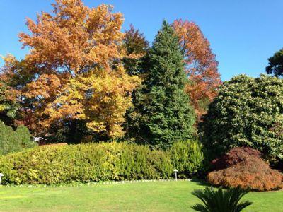 Villa d'epoca a Verbania Biganzolo parco